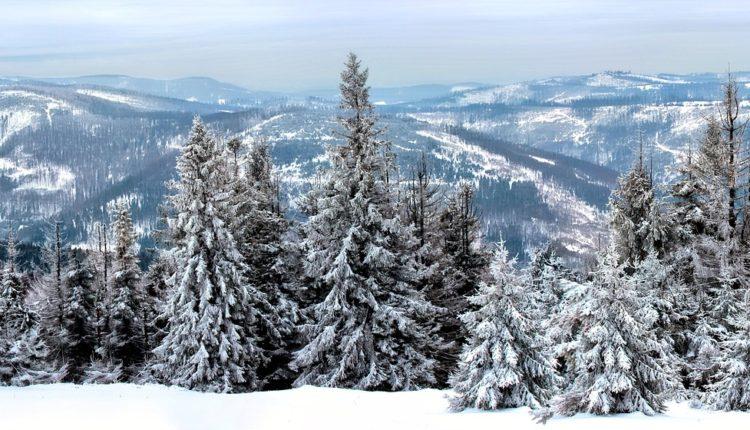 winter-767172_1920
