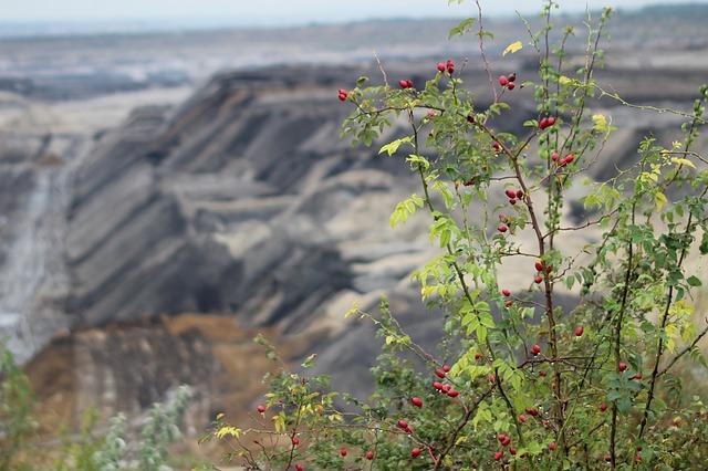 mining-2853693_640