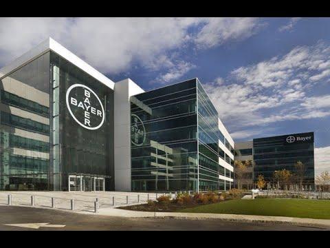 Биомедицинский-стартап-и-Big-Pharma-возможные-пути-сотрудничества-докладчик-Bayer-AG