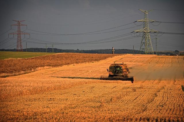 harvest-1640196_640