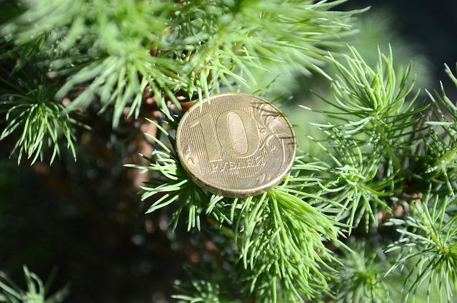tree-3346788_640