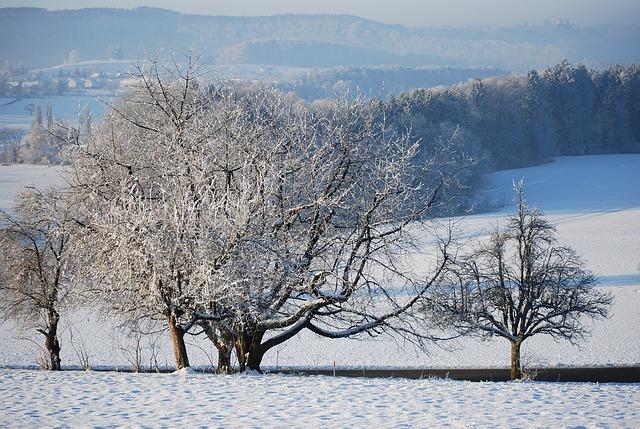 winter-2306542_640